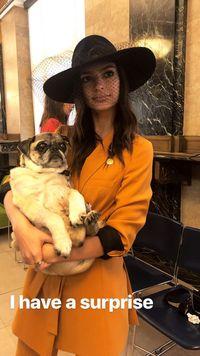 Anti-mainstream, Emily Ratajkowski Nikah Pakai Baju Zara Rp 2 Jutaan