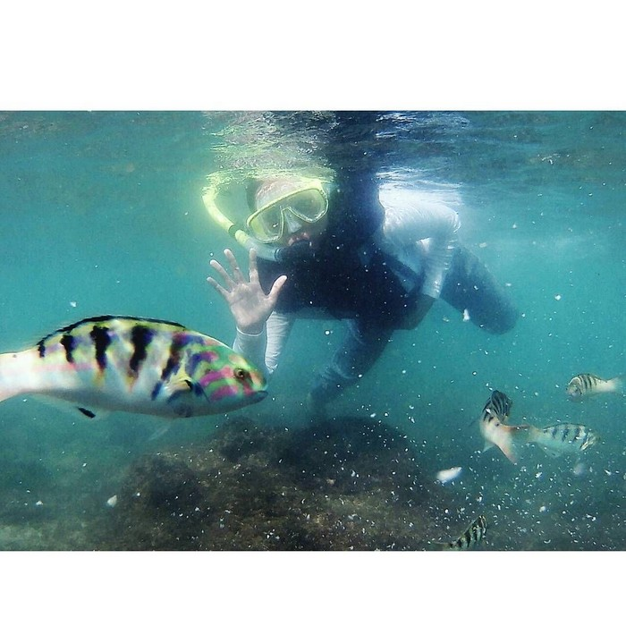 Kadang menyatu dengan air untuk memandangi ikan-ikan yang super lucu. Foto: Instagram/riaricis1795