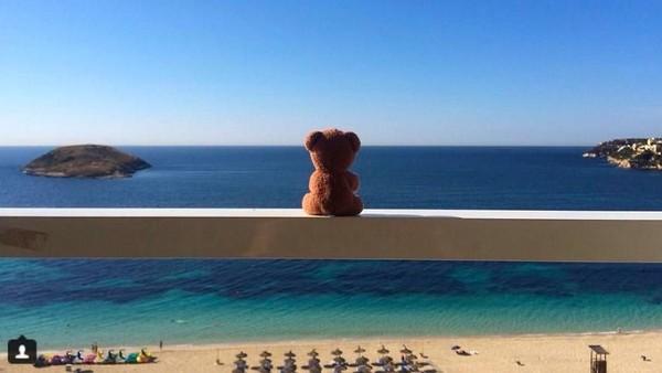 Traveler yang misterius ini selalu memfoto Teddy Bear di tempat-tempat cantik saat dia keliling dunia. (teddybearabroad/Instagram)