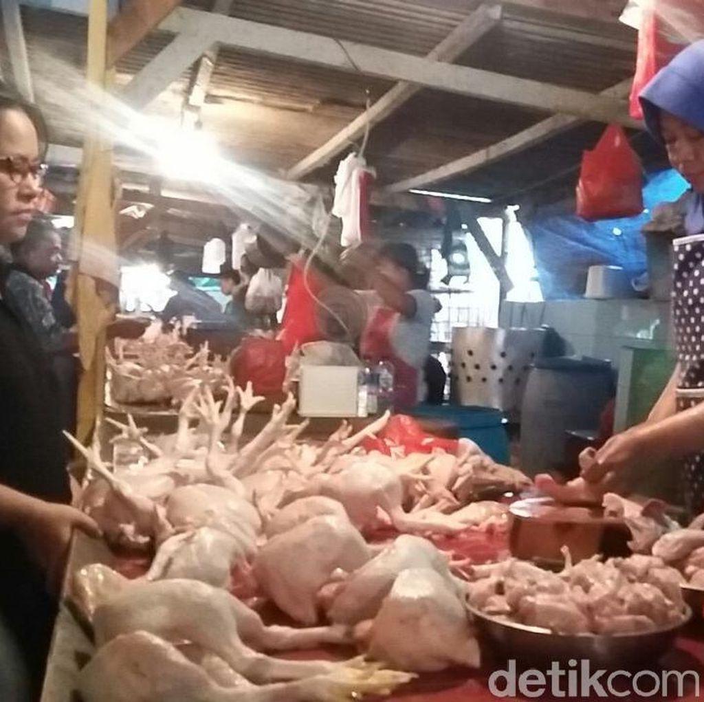 Kata Mendag Soal Harga Daging Ayam Masih Mahal