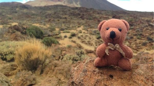 Dalam akun Instagramnya, traveler asal Belanda ini menyebutkan boneka ini bernama Peep. (teddybearabroad/Instagram)