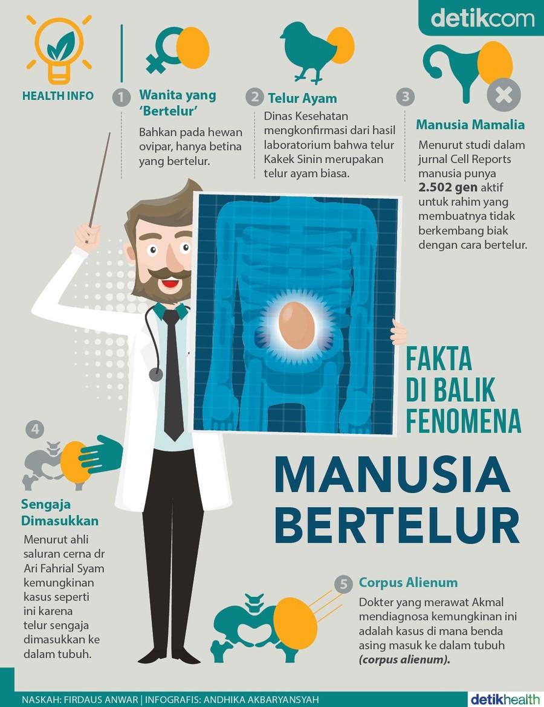 Foto: infografis