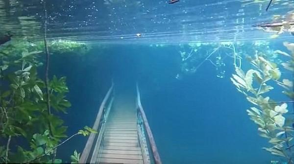 Foto: Fenomena banjir ini memang tidak berlangsung lama. Setelah surut, wisawatan tetap bisa menikmati kegiatan snorkeling di Sungai Olho DAgua. (Recanto Ecologico Rio da Prata/Youtube)