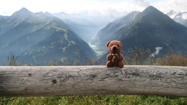 Ini salah satu foto Peep tatkala sedang berada di Penken, Zillertal, Austria. Mengemaskan bukan? (teddybearabroad/Instagram)