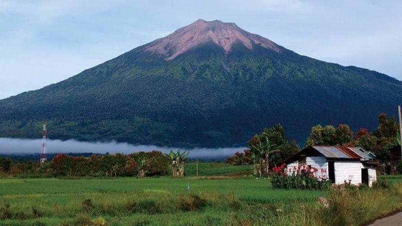 Gunung Kerinci di Jambi memiliki magnet bagi wisatawan karena keindahannya. Untuk mendaki gunung Kerinci harus menyiapkan fisik dan mental. Jalurnya lumayan panjang dan hutannya masih lebat.(BBTNKS)