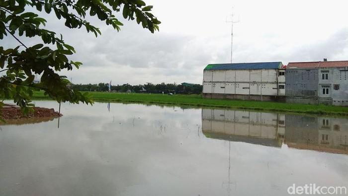 Rumah tapak DP Rp 0 di Rorotan, Cilincing, Jakarta Utara, akan dibangun di atas lahan seluas 1,3 hektar. Lahan tersebut saat ini berfungsi sebagai areal persawahan.
