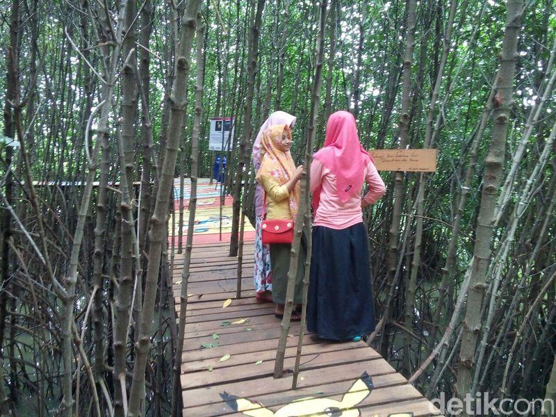 Nama destinasi wisata baru ini Ekowisata Rumah Edukasi Silvofishery (Reduksi). Lokasinya di Demak, Jawa Tengah. Anak-anak muda banyak yang ke sini. (Wikha/detikTravel)