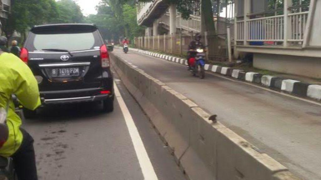 Pemotor Nekat Lawan Arus di Jalur TransJakarta
