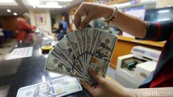 Dolar AS Tembus 14.412 Sore Ini