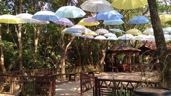 Menjajal Taman Wisata Alam Angke Kapuk di Libur Lebaran
