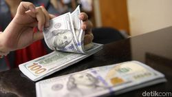 Naik Turun, Dolar AS Pagi Ini Bergerak di Level Rp 14.200-an