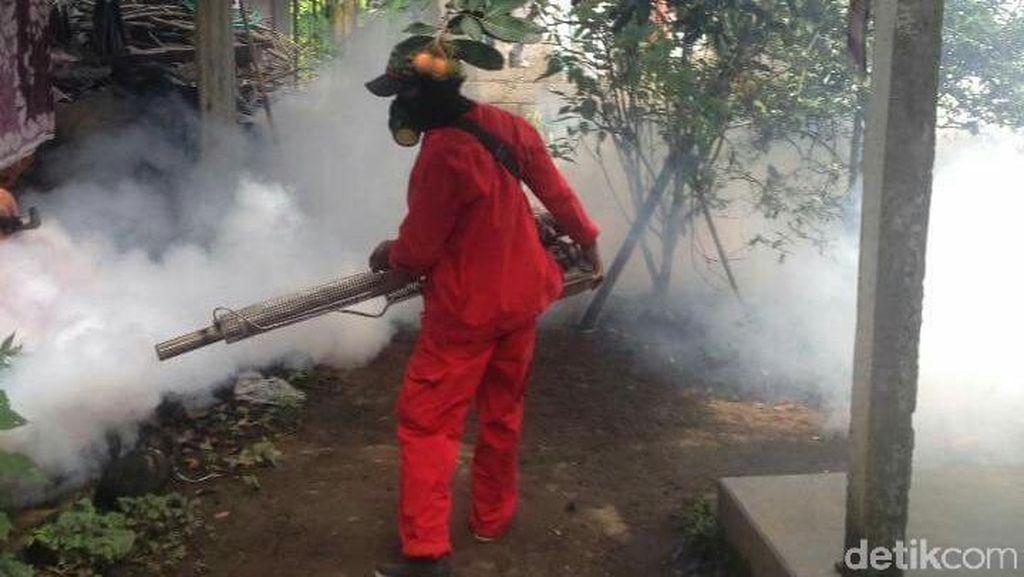 Ini Sebabnya Fogging Nggak Pernah Efektif Berantas Nyamuk