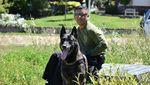 Kisah Anjing yang Nyaris Ompong Gara-gara Lumpuhkan Penjahat
