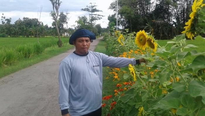 Minimalkan Pestisida Petani Ini Tanam Bunga Untuk Usir Hama
