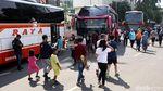 Bus-bus AKAP Keren Ini Bisa Dipesan Online Lho...