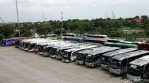 DKI Jakarta Bakal Setop Sementara Layanan Bus AKAP dan Pariwisata