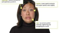 Berikut ada tes dari University of California, Berkeley, foto orang yang menunjukkan ekspresi wajah tertentu. Coba tebak emosi apa yang diekspresikannya.