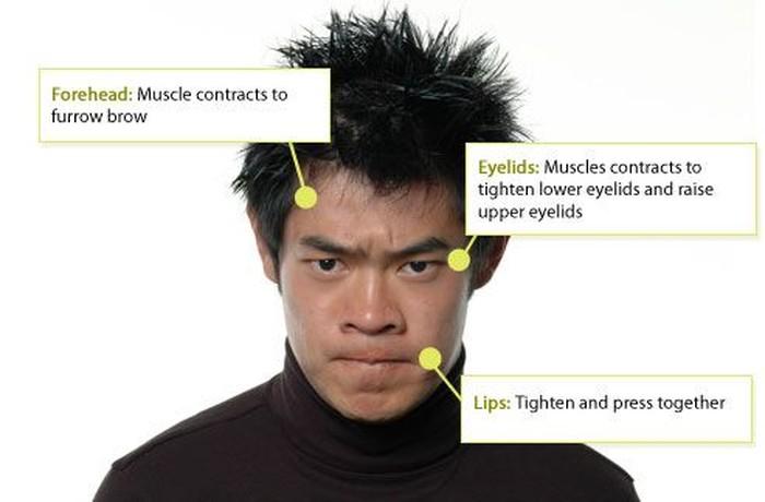 Jawabannya adalah marah. Karakteristik ekspresi marah dapat dilihat dari kontraksi otot pada alis, kelopak mata, dan bibir bagian atas. (Foto: greatergood.berkeley.edu)