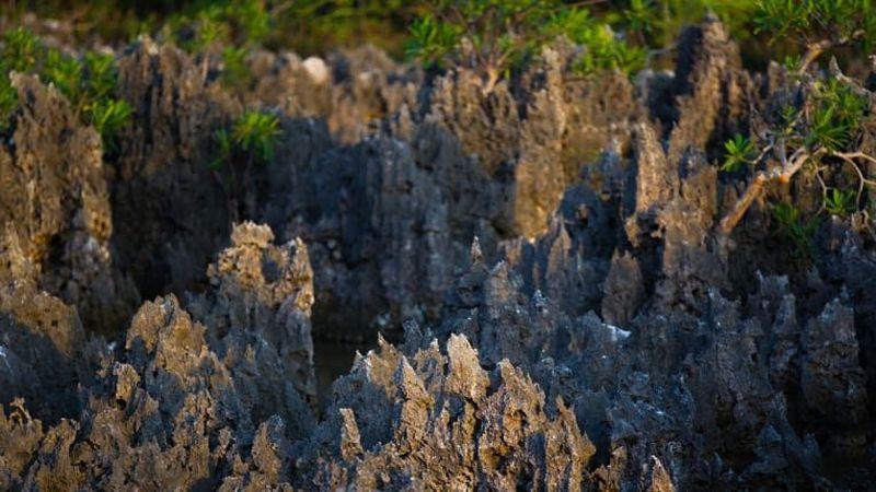 Neraka, Grand Cayman. Bebatuan hitam yang licin menutupi area sekitar setengah lapangan sepak bola di West Bay Grand Cayman, Karibia dan disebut dengan nama Neraka (Hell) (CNN Travel)