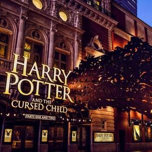 The Wait is Over, Ini Dia Koleksi Sneakers Vans yang Bertemakan Harry Potter