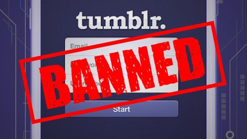 Aplikasi Tumblr Didepak Apple, Kenapa?