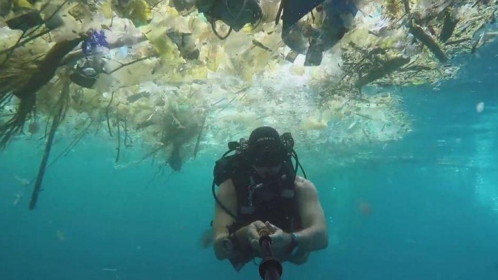 Kasihan Bali, Korban Sampah Laut
