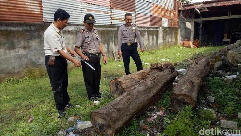 Oknum Karyawan Perhutani Terlibat Pembalakan Liar di Grobogan
