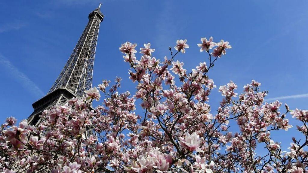 Catat! Ini 5 Destinasi Terbaik Dunia untuk Dikunjungi di Bulan April