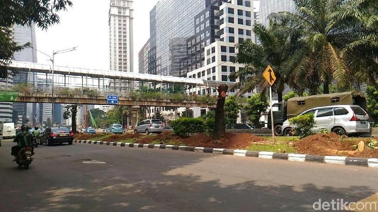 Melihat Bekas Lokasi Pohon yang Dipindahkan dari Sudirman-Thamrin