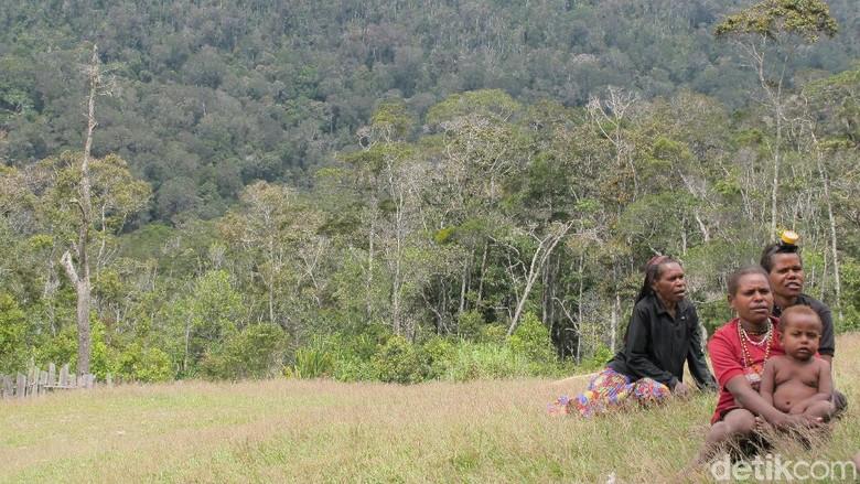 Foto: Masyarakat Desa Ugimba di Pedalaman Papua (Afif Farhan/detikTravel)