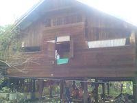 Menyusuri Desa Markam di Aceh, Penyumbang 28 Kg Emas Puncak Monas