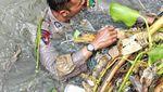 Foto: Kali Penuh Sampah yang Sulitkan Pencarian Jenazah Bocah Rohim