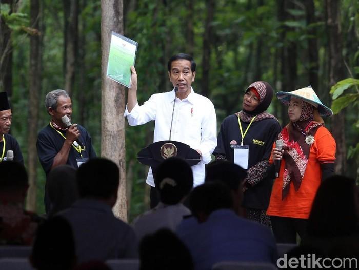 Presiden Jokowi terlihat sangat semringah saat panen raya jagung di lahan Program Perhutanan Sosial, Desa Ngimbang, Tuban, Jawa Timur.