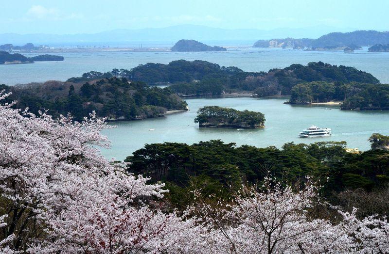 Matsushima merupakan kepulauan di Prefektur Miyagi dan termasuk dalam Nihon Sankei alias Three Views of Japan. Pemandangan di sini pun menjadi salah satu yang terindah di Jepang (Thinkstock)