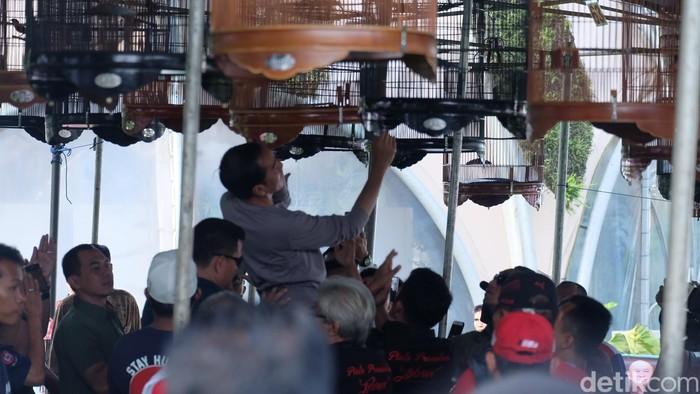 Foto ilustrasi: Presiden Jokowi di Kontes Burung, Kebun Raya Bogor (Andhika Prasetya/detikcom)