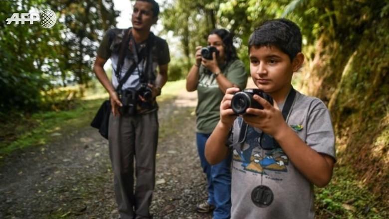 Foto: Surga di Kolombia Bagi Para Pencari Burung