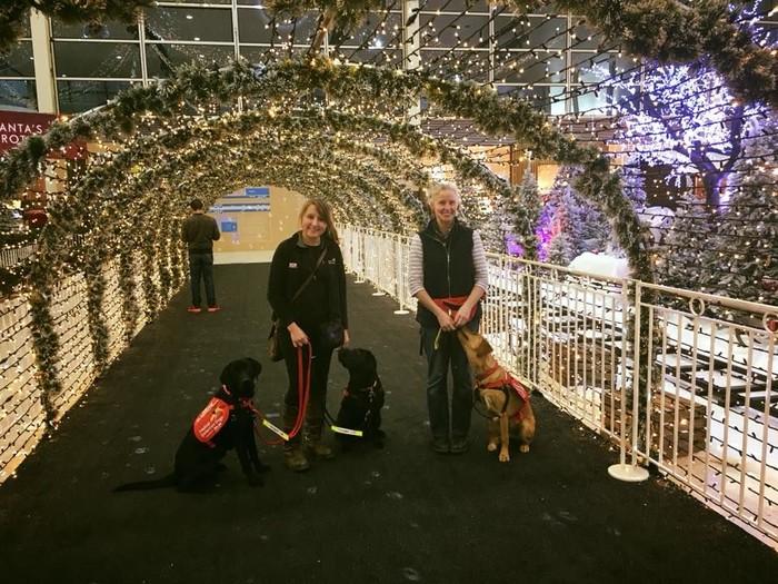 Bukan hanya anjingnya yang imut, pelatihnya Suzanne dan Rebecca juga imut lho. (Foto: Facebook/Medical Detection Dogs)