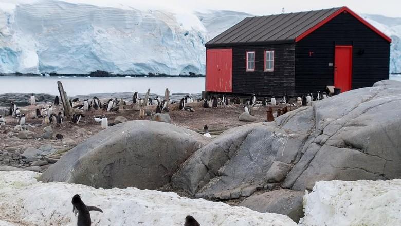 Foto: Museum Port Lockroy, Antartika (alanaxelrod/Instagram)