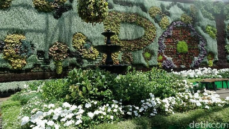 Foto: The Royal Botanical Garden Sydney (Aditya Mardiastuti/detikTravel)