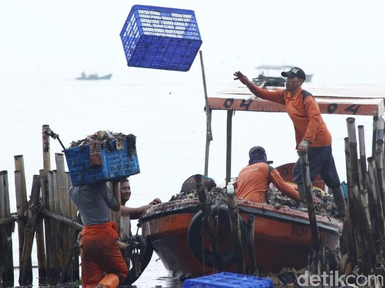 Angkut 16 Ton Sampah, Pembersihan Teluk Jakarta Dilanjut Besok