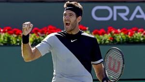 Del Potro Tantang Federer di Final