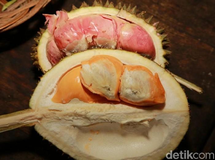 Bau durian yang menyengat disukai sebagian orang dan dibenci sebagian lainnya. (Foto: Ardian Fanani/detikTravel)
