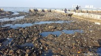 Di Penjaringan, detikcom pada Jumat (16/3/2018), mengunjungi lokasi tumpukan sampah pinggir laut berada persis di samping Kawasan Hutan Manggrove Ecomarine Muara Angke. Kebanyakan, sampah-sampah tersebut merupakan limbah rumah tangga. (Foto: Zunita Amalia Putri/detikcom)