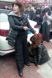 Viral, Video Istri Jambak Rambut Pelakor dan Permalukannya di Depan Umum