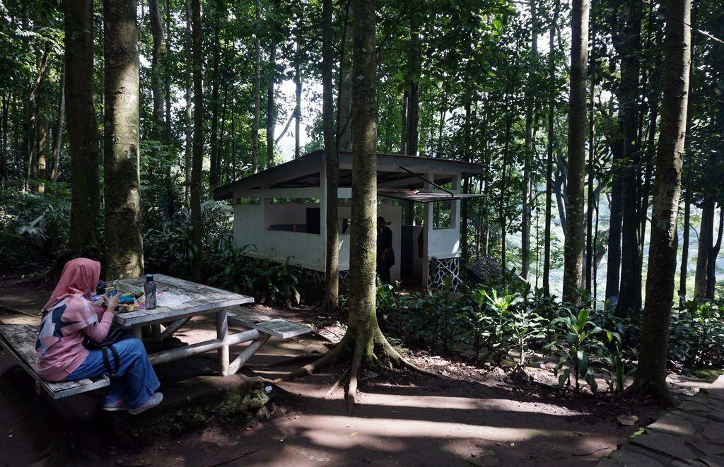 Bank BRI terus menunjukan komitmennya terhadap dunia lingkungan dengan menanam 123 bibit pohon di Taman Hutan Raya Juanda, Bandung, Jawa Barat.