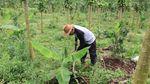 Potret Petani Aceh yang Tanggalkan Gaji Rp 75 Juta di World Bank