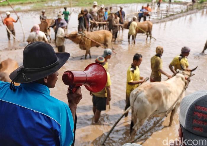 Foto: Adi Fida Rahman/detikINET