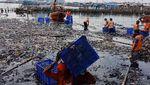 Potret Kerja Keras Petugas Bersihkan Lautan Sampah di Teluk Jakarta