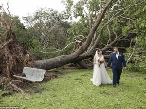 Dramatis, Pasangan Ini Menikah di Tengah Pohon Tumbang Usai Badai