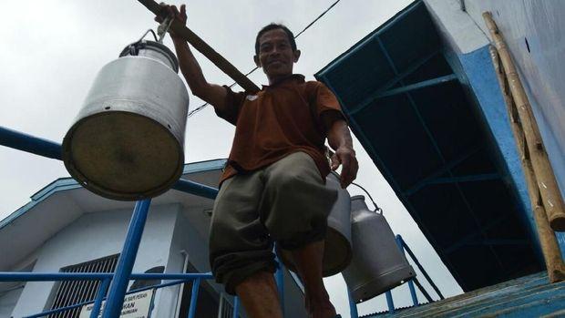 Kampung Susu Kalipucang, Paket Lengkap Wisata di Pasuruan